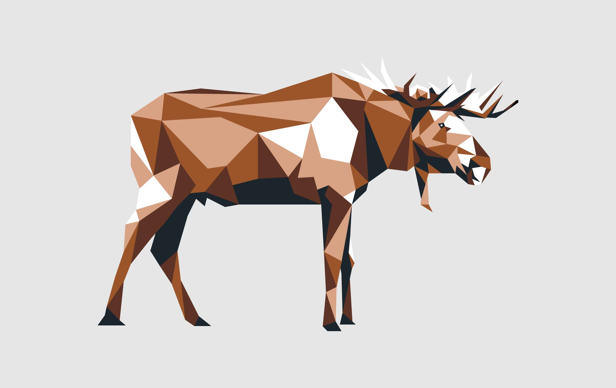 extinct animals infographic thumbnail